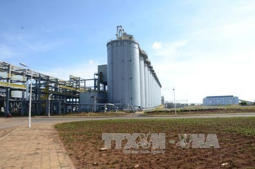 L'usine de production d'aluminium Nhan Co: moteur du developpement du Tay Nguyen hinh anh 1