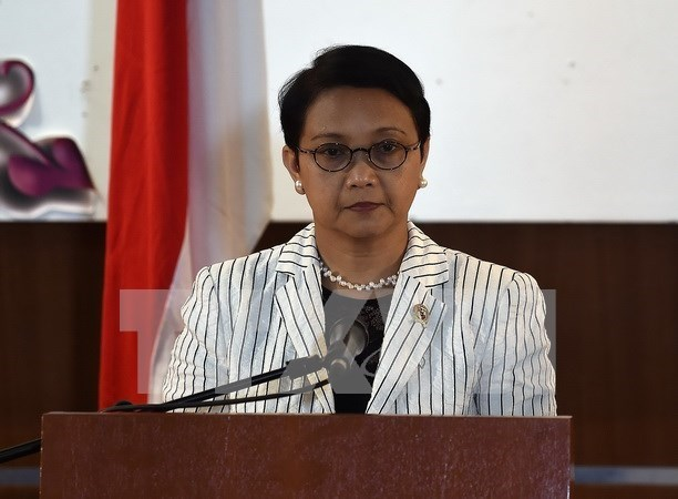 Indonesie et Mozambique promeuvent leur cooperation economique hinh anh 1