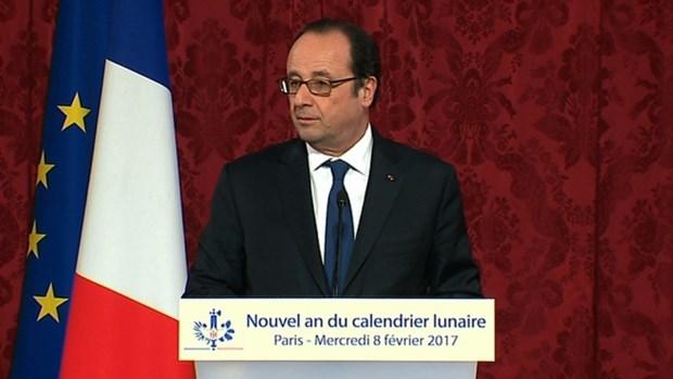 Nouvel An lunaire : le President francais formule ses vœux aux pays asiatiques hinh anh 1