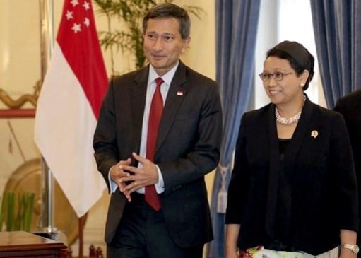 Indonesie et Singapour celebrent les 50 ans de l'etablissement des liens diplomatiques hinh anh 1
