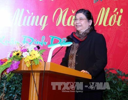 La vice-presidente de l'AN Tong Thi Phong en visite a New York hinh anh 1