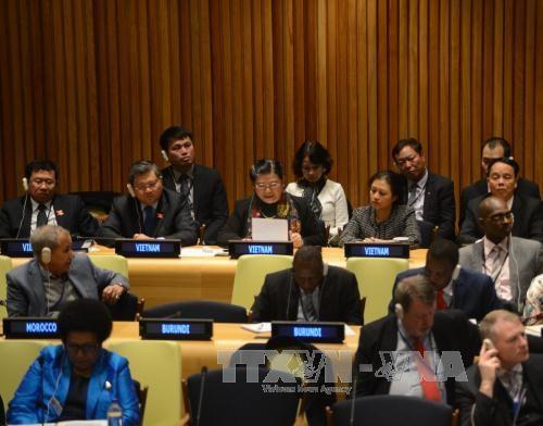 Le VN est pret a cooperer avec la communaute internationale pour proteger l'environnement maritime hinh anh 1