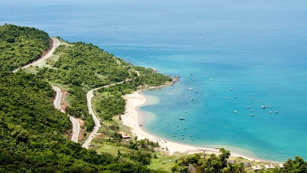 Da Nang entend developper la zone touristique nationale de Son Tra hinh anh 1