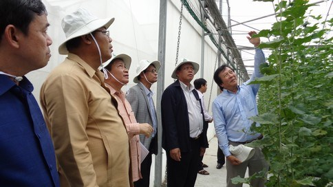 Ho Chi Minh-Ville et Champassak renforcent leurs relations de cooperation hinh anh 1