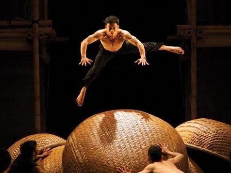 Un spectacle de cirque et de danse du Vietnam ravit le public australien hinh anh 1
