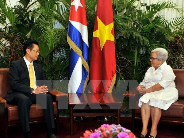Les relations Vietnam-Cuba ne cessent de se developper hinh anh 1