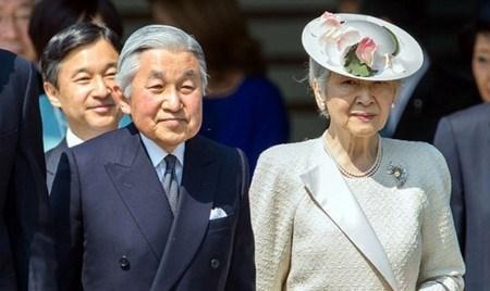 Visite au Vietnam de l'Empereur du Japon, un jalon important dans les relations bilaterales hinh anh 1
