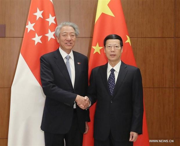 La Chine et Singapour definissent les priorites de leur cooperation future hinh anh 1