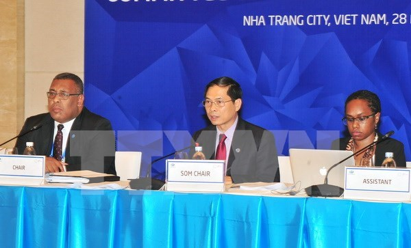 APEC 2017 : promotion de la cooperation economique et technique hinh anh 1