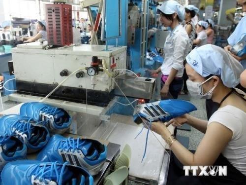 Cuir et chaussures : la conference de promotion des exportations aura lieu ce mois hinh anh 1