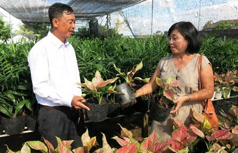 Au Sud, Dong Thap sort les rames pour un tourisme responsable hinh anh 2