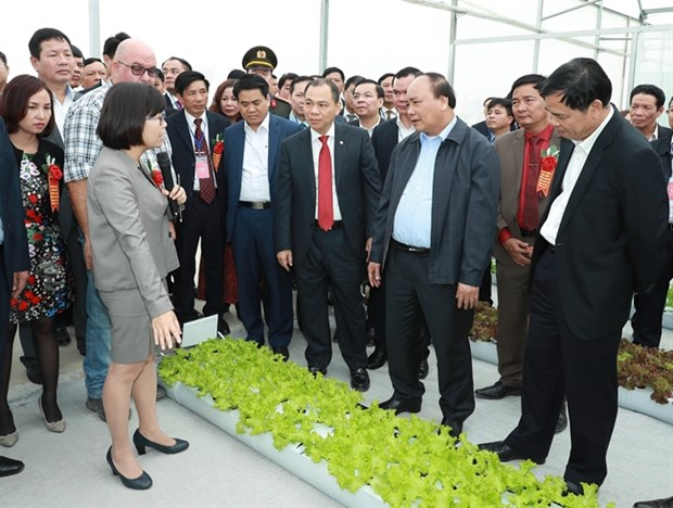 Comment Ha Nam developpe l'agriculture high-tech hinh anh 1
