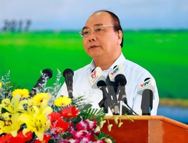 Pour le developpement durable de la riziculture dans le delta du Mekong hinh anh 1