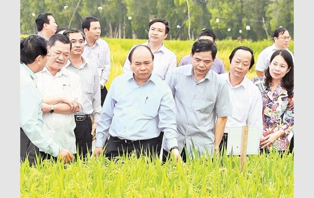 Le PM exhorte An Giang a elever la valeur ajoutee des produits agricoles hinh anh 2