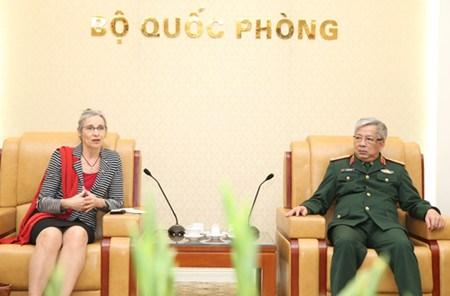 Vietnam-Pays-Bas : cooperation dans le maintien de la paix hinh anh 1