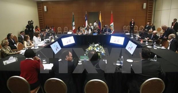 Les Etats membres du TPP s'engagent a favoriser l'integration economique et commerciale regionale hinh anh 1
