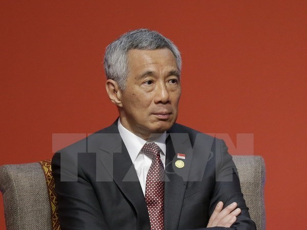 Promouvoir des relations de cooperation satisfaisantes Vietnam-Singapour hinh anh 1
