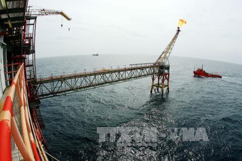 PetroVietnam depasse ses objectifs du premier trimestre hinh anh 1