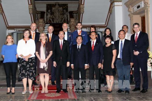 HCM-Ville et les Pays-Bas renforcent leur cooperation dans l'agriculture hinh anh 1