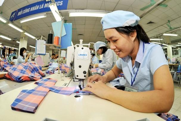 L'industrie textile du Vietnam envisage une croissance d'entre 6,5% et 7% hinh anh 1