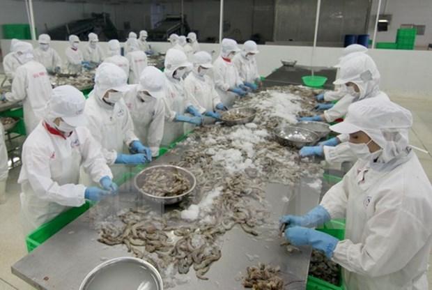 Crevettes : le Vietnam vise une valeur d'exportation de 5 milliards de dollars hinh anh 1