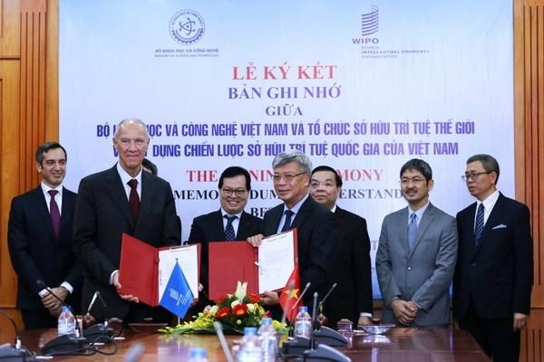 L'OMPI assiste le Vietnam en matiere de propriete intellectuelle hinh anh 1