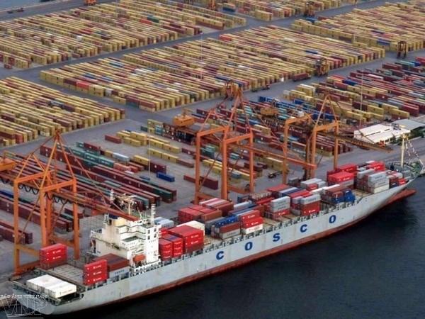 Une nouvelle voie maritime ASEAN-Chine pour le transport de fruits hinh anh 1