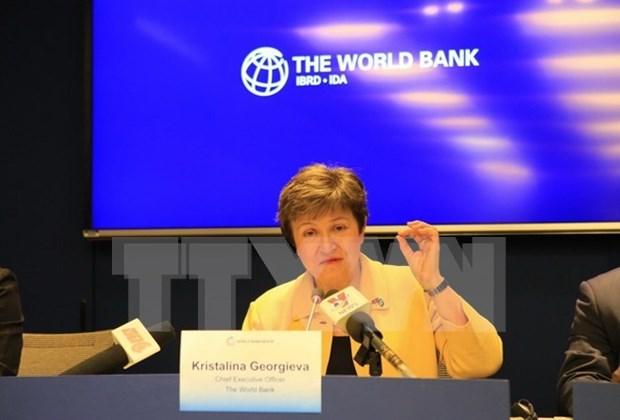 HCM-Ville et la Banque mondiale cooperent pour ameliorer la qualite de vie de la population hinh anh 1