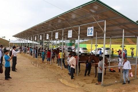 Inauguration de l'hippodrome Thien Ma-Madagui hinh anh 1