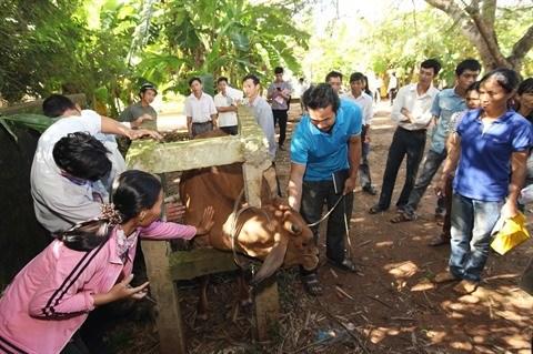 Formation professionnelle en zone rurale : 12.600 milliards pour 2016-2020 hinh anh 2