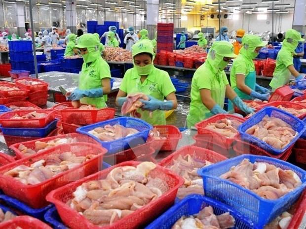 Hausse des exportations de produits agricoles, sylvicoles et aquacoles au premier trimestre hinh anh 1