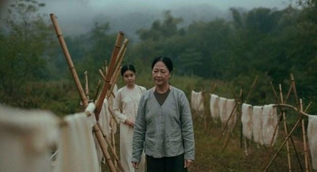 Des films vietnamiens seront projetes au Festival de Cannes 2017 hinh anh 1