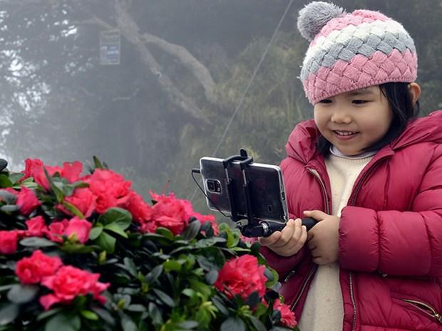 La fete des fleurs de rhododendron a Sa Pa hinh anh 1