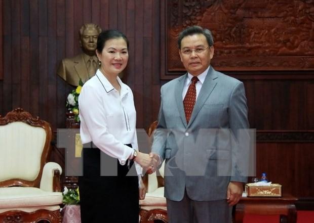 Vietnam et Laos cooperent dans la sensibilisation aux grands evenements en 2017 hinh anh 1