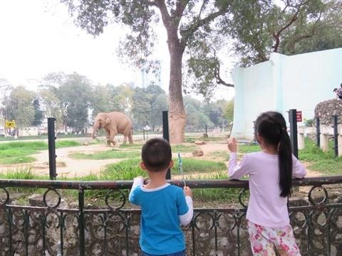 Les espaces verts pour les enfants a Hanoi hinh anh 3