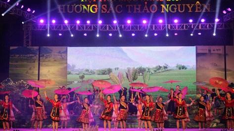 Compte rendu du Festival du the de Moc Chau hinh anh 1