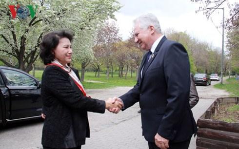 Vietnam-Hongrie : renforcement des relations entre les deux organes legislatifs hinh anh 1