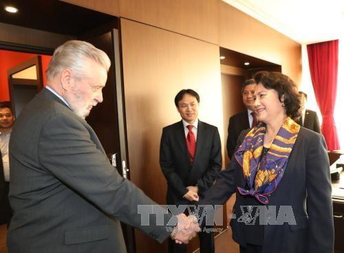 La presidente de l'AN estime les activites de l'Association d'amitie Hongrie-Vietnam hinh anh 1
