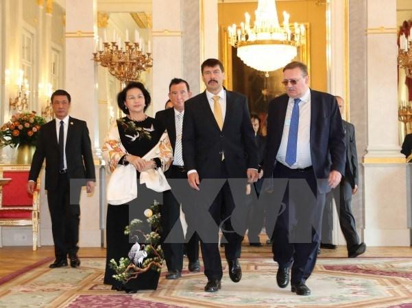 Entrevue entre la presidente de l'AN vietnamienne et le president hongrois hinh anh 1