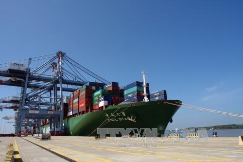 Un cargo de 160.000 tonnes mouille au port de Tan Cang Cai Mep-Thi Vai hinh anh 1