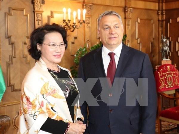 La presidente de l'Assemblee nationale vietnamienne rencontre le Premier ministre hongrois hinh anh 1