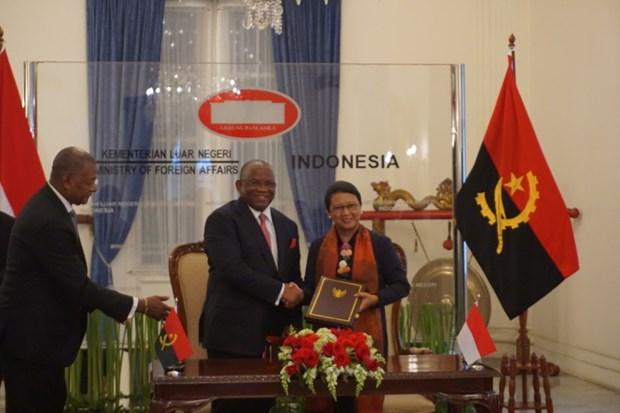 L'Indonesie et l'Angola renforcent leurs relations hinh anh 1