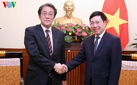 Le vice-Premier ministre Pham Binh Minh recoit l'ambassadeur du Japon hinh anh 1