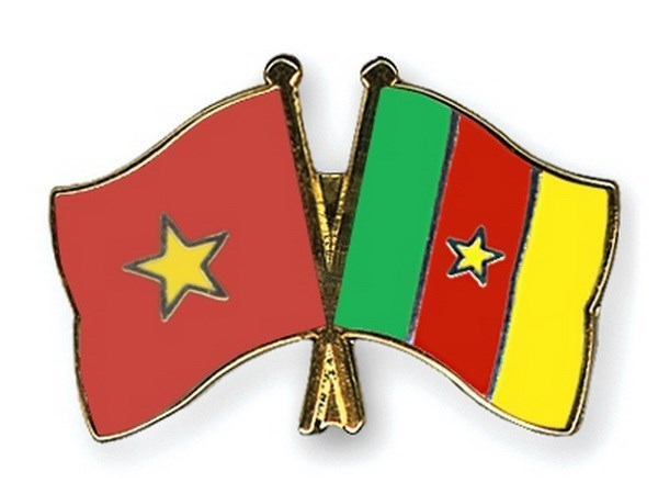 Le Vietnam promeut son partenariat avec le Cameroun hinh anh 1