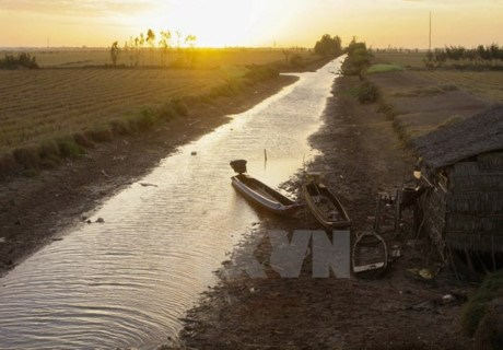 La securite de l'eau en debat a Hanoi hinh anh 1