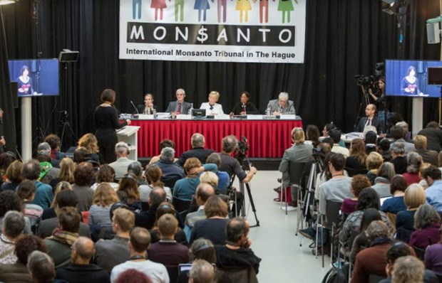 Monsanto accusee d'« ecocide » par un tribunal international hinh anh 1