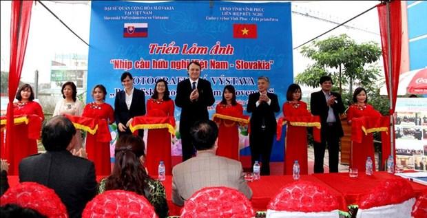 L'Association d'amitie Vietnam-Slovaquie en congres hinh anh 1