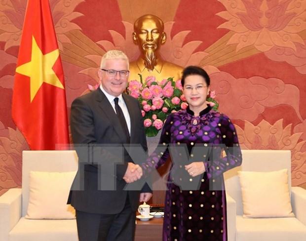 La presidente de l'AN recoit les ambassadeurs australien et neo-zelandais hinh anh 1