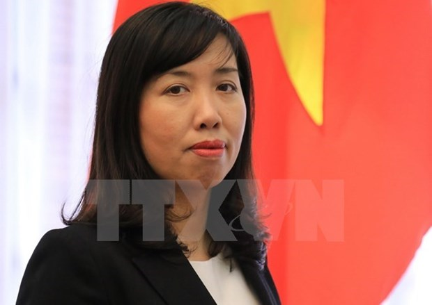 Le Vietnam proteste contre les violations de sa souverainete sur Hoang Sa hinh anh 1