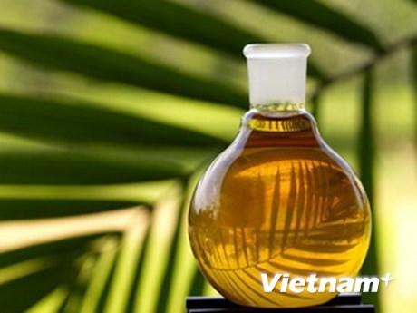 L'Indonesie appelle l'ASEAN a protester contre la limite de consommation de l'huile de palme hinh anh 1